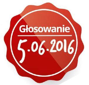 Logo wyborów RO